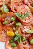 Tomatenvoedsel Stock Foto's