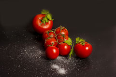 Tomatenzusammensetzungen Stockfoto
