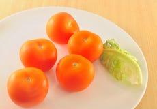 Tomater Arkivbild