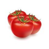 3 tomater Fotografering för Bildbyråer
