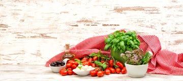 Tomater, basilika, örter, mozzarella och olivolja matbackgroun Royaltyfria Bilder