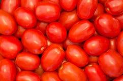 tomater för bakgrundsmatserie Royaltyfri Fotografi