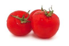 tomater för bakgrundsred tre vätte white Arkivfoto