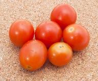 tomater för red för bakgrundsCherrykork Royaltyfria Foton