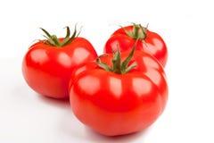 tomater för red tre Royaltyfria Bilder