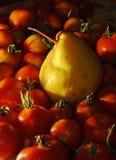 Tomater - grönsaker, frukt eller bär? Royaltyfri Fotografi