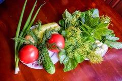 Tomater, gurka, salladslökar, vitlök, peppar och örter Royaltyfria Foton