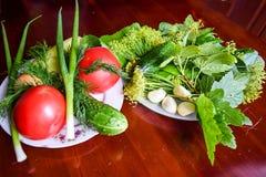 Tomater, gurka, salladslökar, vitlök, peppar och örter Arkivbild