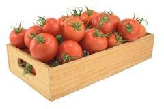 Tomater i en isolerad träask Royaltyfri Fotografi