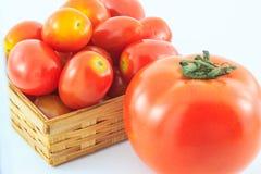 Tomater i en korg på vit bakgrund Royaltyfri Bild