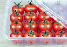 Tomater i en plast- behållare Royaltyfri Foto