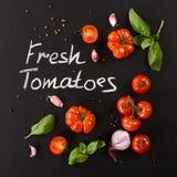Tomater med örtar royaltyfri fotografi