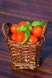Tomater med basilika i korg Arkivbild