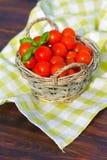 Tomater med basilika i korg Arkivfoto