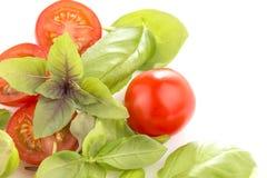Tomater med basilika på vit bakgrund royaltyfria bilder