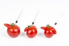 Tomater med deformering och defekter på vit bakgrund, med injektionssprutan arkivbilder