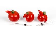 Tomater med deformering och defekter på vit bakgrund, med injektionssprutan arkivfoton