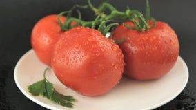 Tomater med vattendroppar arkivfilmer