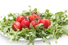 Tomater och arugula Arkivbild