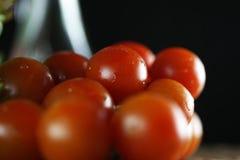 Tomater och basilika Arkivfoton