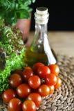 Tomater och basilika Royaltyfri Fotografi