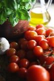 Tomater och basilika Fotografering för Bildbyråer