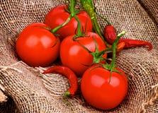 Tomater och Chili Peppers Royaltyfria Bilder