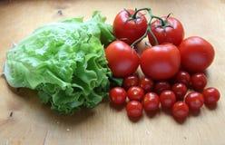 Tomater och grönsallat Royaltyfri Fotografi
