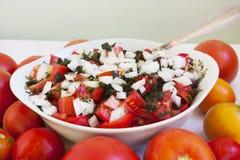 Tomater och grönsallat Arkivbilder