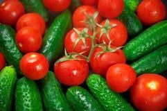 Tomater och gurkor Arkivbild