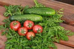 Tomater och gurkor Royaltyfria Foton