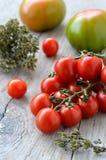 Tomater och oreganon Fotografering för Bildbyråer