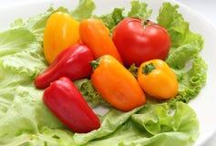 Tomater och paprika Arkivbilder