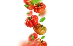 Tomater och sidor som faller från luften royaltyfri fotografi