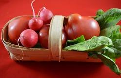Tomater och trädgårds- rädisa Royaltyfri Fotografi