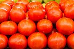 Tomater på bondemarknaden royaltyfria foton