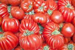 Tomater på en counte Royaltyfri Foto