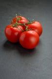 Tomater på en kritiseraplatta Fotografering för Bildbyråer