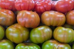 Tomater på en marknad Fotografering för Bildbyråer
