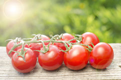 Tomater på en trätabell Royaltyfri Bild