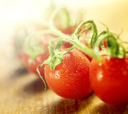 Tomater på en vinranka på en träskärbräda Royaltyfri Fotografi