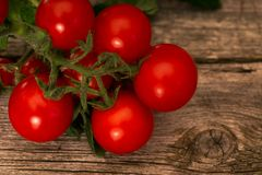 Tomater på lantlig träbakgrund royaltyfria bilder