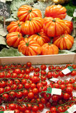 Tomater på marknad Royaltyfri Foto