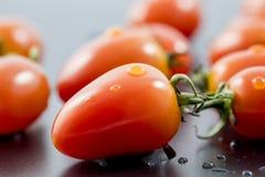 Tomater på svart bakgrund royaltyfria bilder