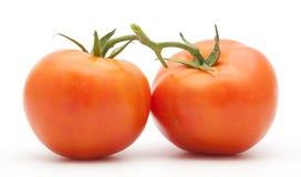 Tomater som isoleras på vit Royaltyfri Bild