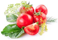Tomater som lagas mat med örter för bevarandet Royaltyfria Bilder