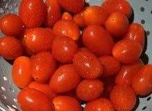 Tomater som ordnas till för vår sallad Arkivfoto