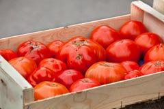 Tomater som säljer i en bondemarknad Royaltyfri Fotografi