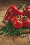 Tomater, spansk peppar och dill Royaltyfri Bild