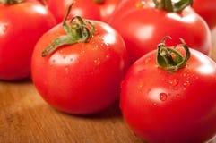 tomater tvättade sig Royaltyfri Bild